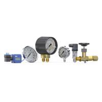 RIEGLER 压力/温度检测